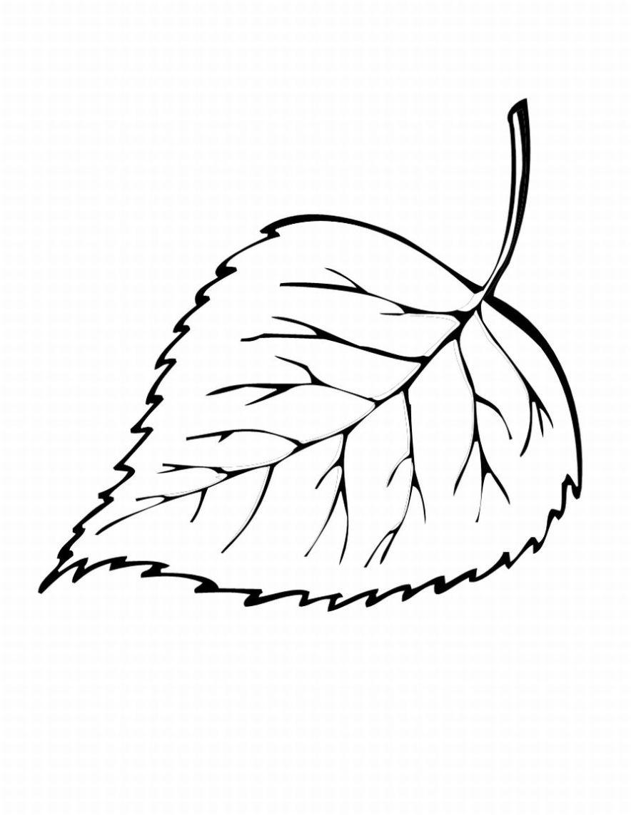 Leaf coloring #11, Download drawings