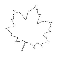 Leaf coloring #3, Download drawings