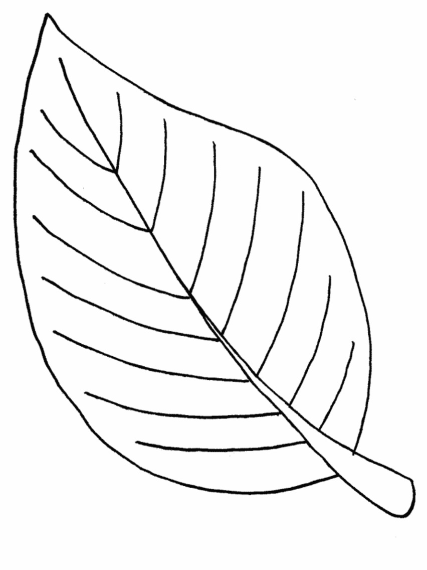 Leaf coloring #7, Download drawings