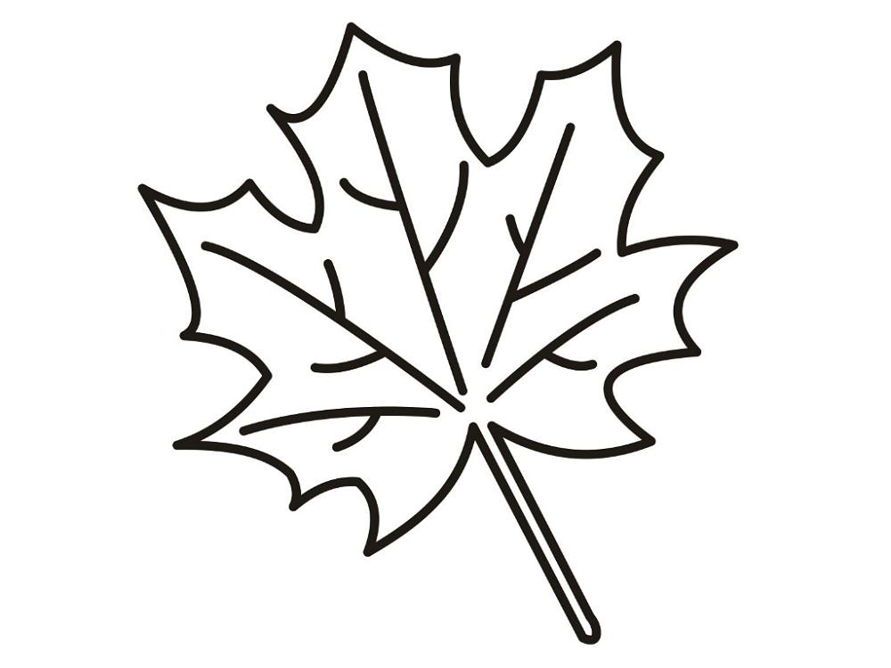 Leaf coloring #2, Download drawings