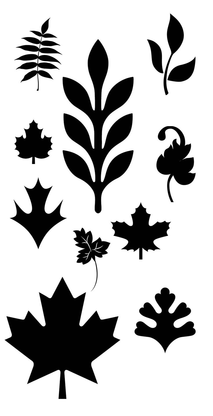 Leaf svg #92, Download drawings