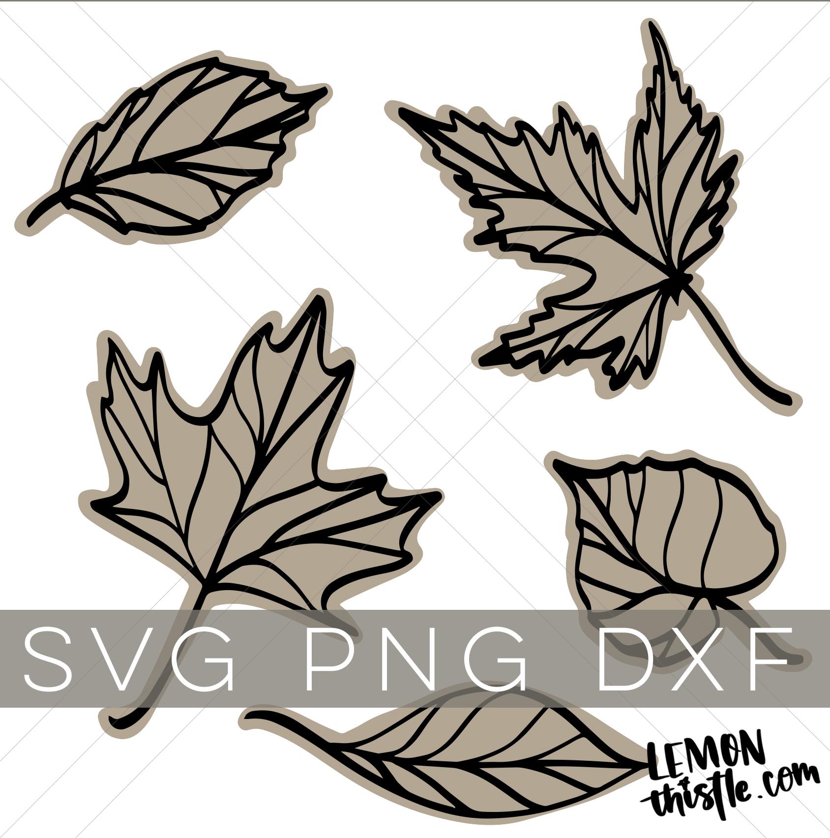 leaf svg free #419, Download drawings