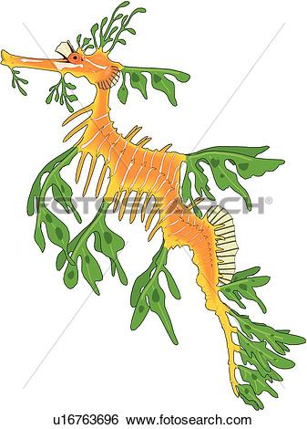 Leafy Seadragon clipart #19, Download drawings