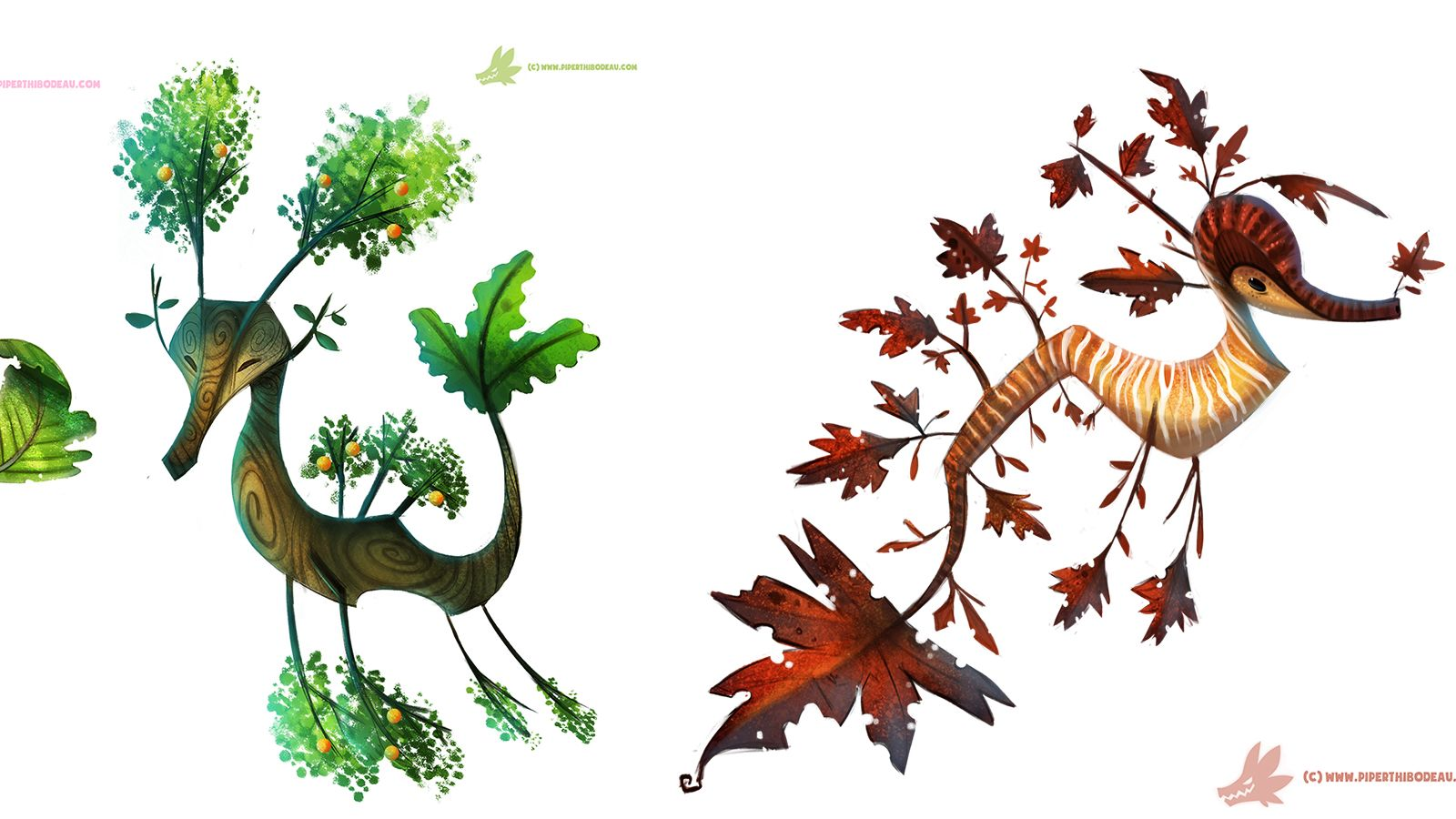 Leafy Seadragon clipart #7, Download drawings