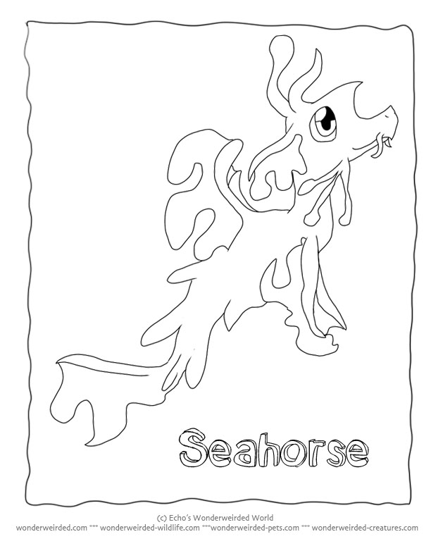Leafy Seadragon coloring #20, Download drawings