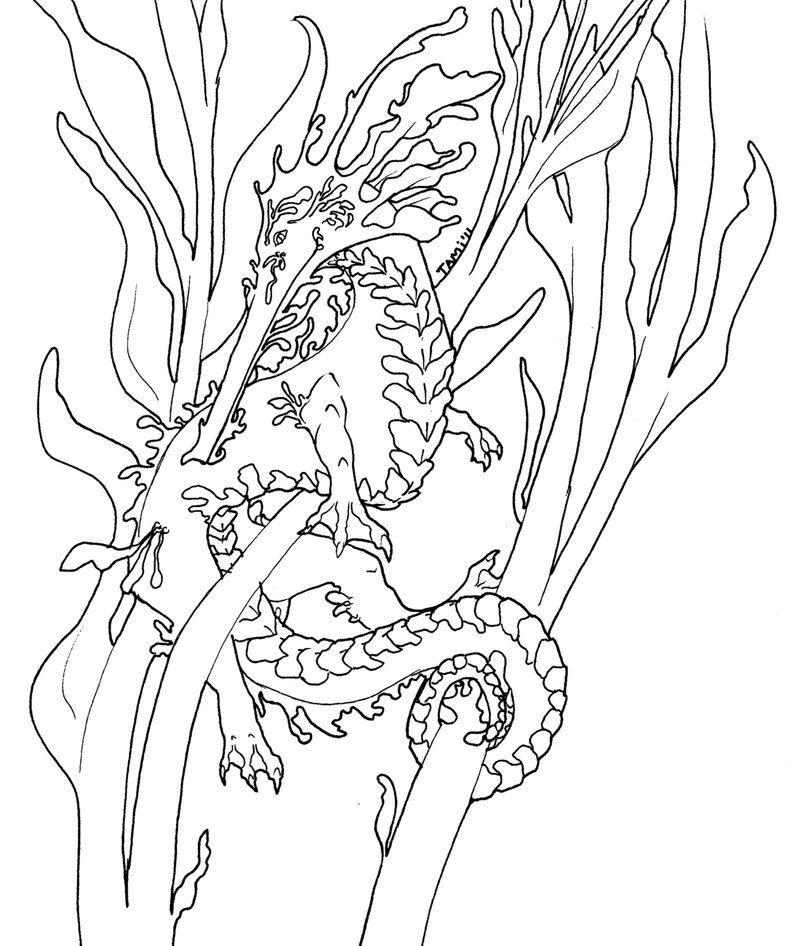 Leafy Seadragon coloring #13, Download drawings