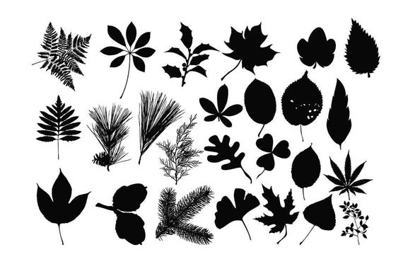 leaves svg free #246, Download drawings