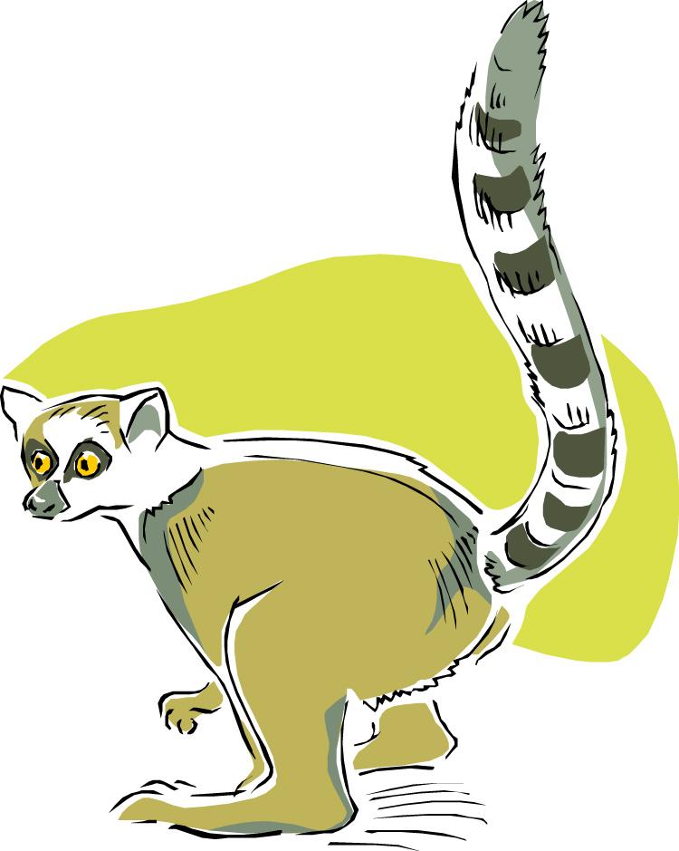 Lemur clipart #1, Download drawings