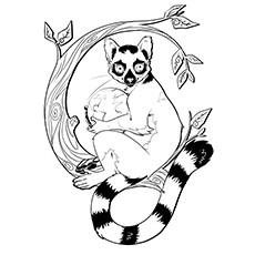 Lemur coloring #16, Download drawings