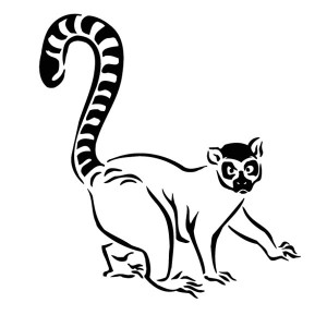 Ring-tailed Lemur coloring #7, Download drawings