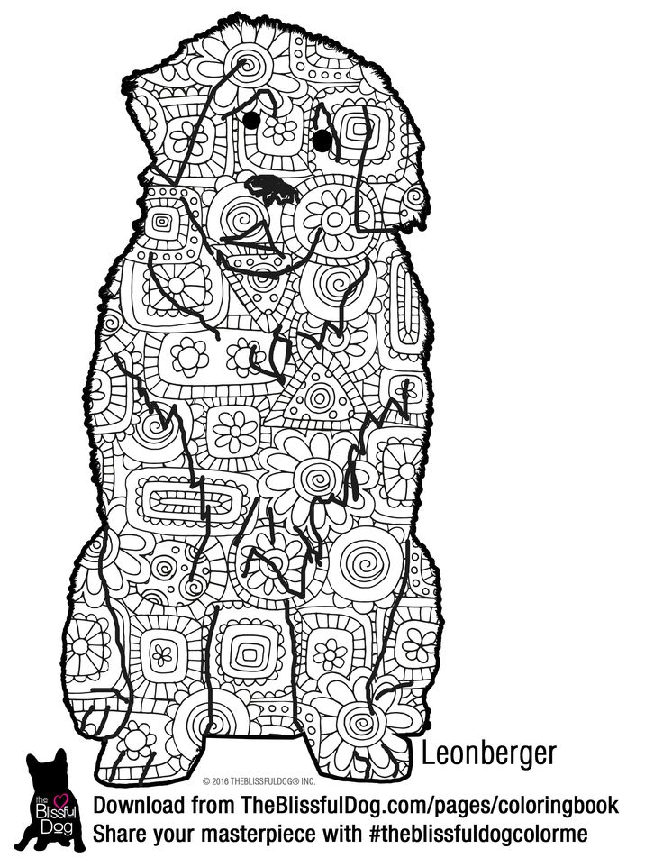 Leonberger coloring #1, Download drawings