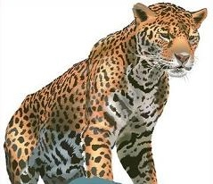 Leopard clipart #10, Download drawings