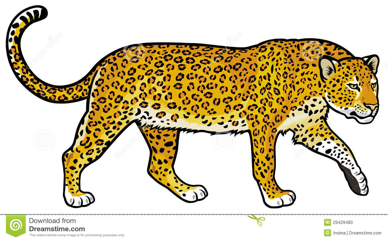 Leopard clipart #5, Download drawings