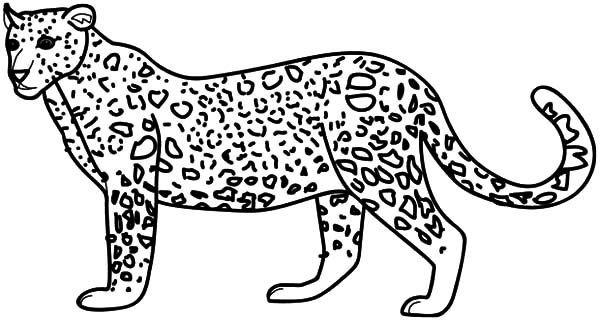 Leopard coloring #15, Download drawings