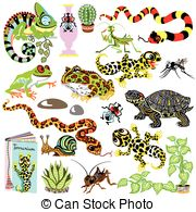 Leopard Gecko clipart #3, Download drawings