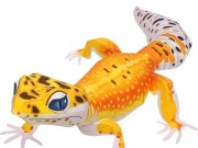 Leopard Gecko svg #13, Download drawings