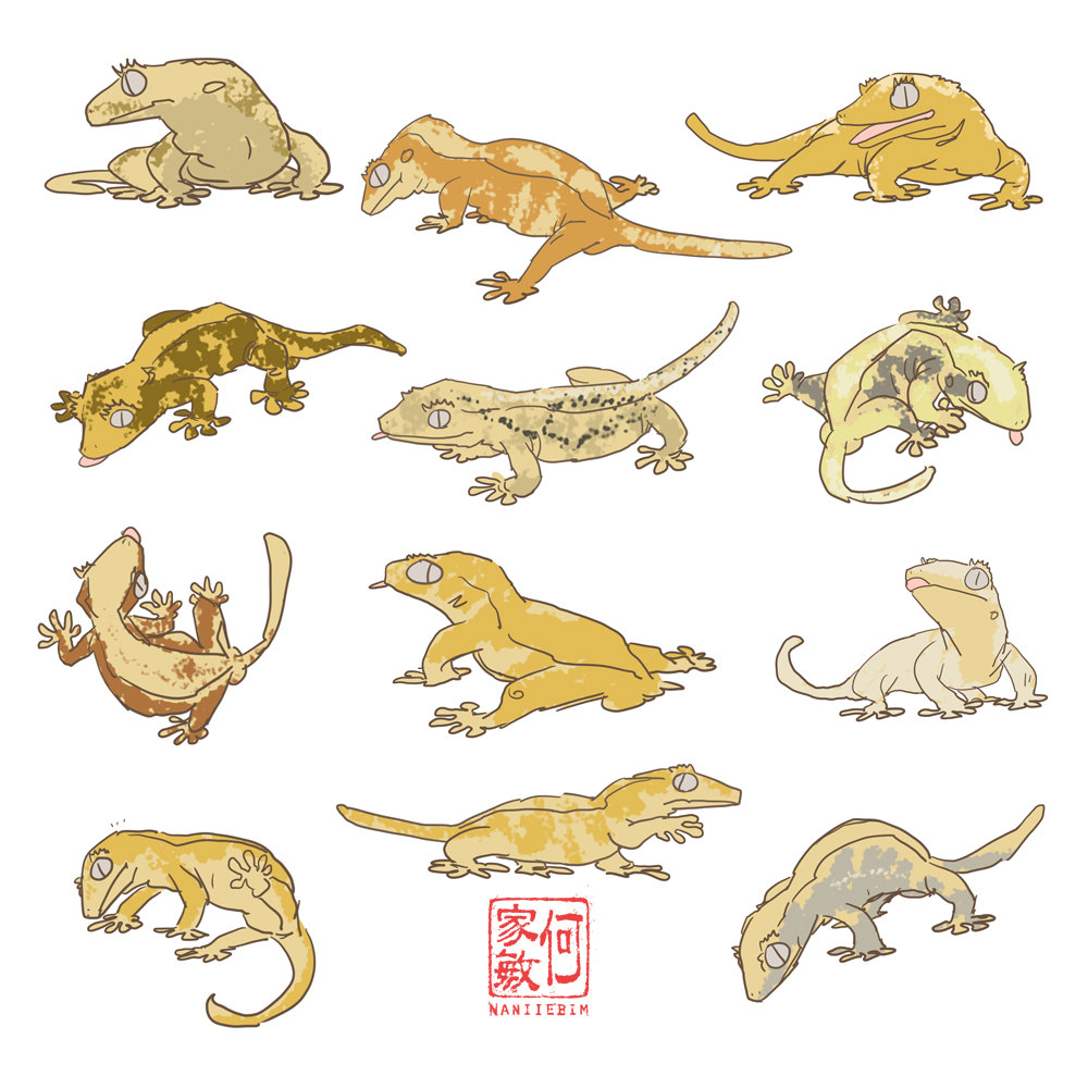 Leopard Gecko svg #19, Download drawings