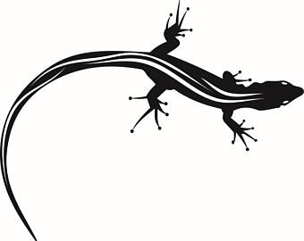 Tokay Gecko svg #19, Download drawings
