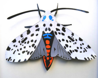 Leopard Moth coloring #19, Download drawings
