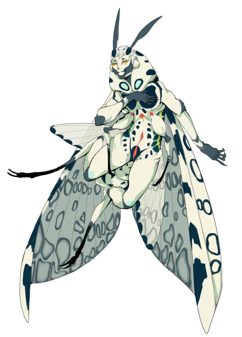 Leopard Moth clipart #9, Download drawings
