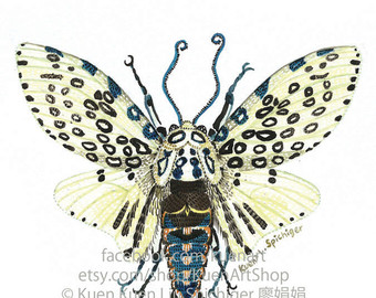 Leopard Moth coloring #15, Download drawings