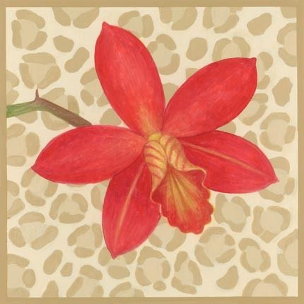 Leopard Orchid clipart #4, Download drawings