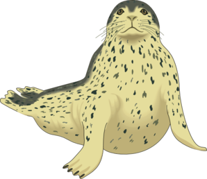 Leopard Seal clipart #20, Download drawings