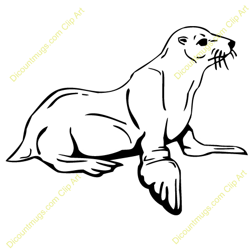 Leopard Seal clipart #3, Download drawings