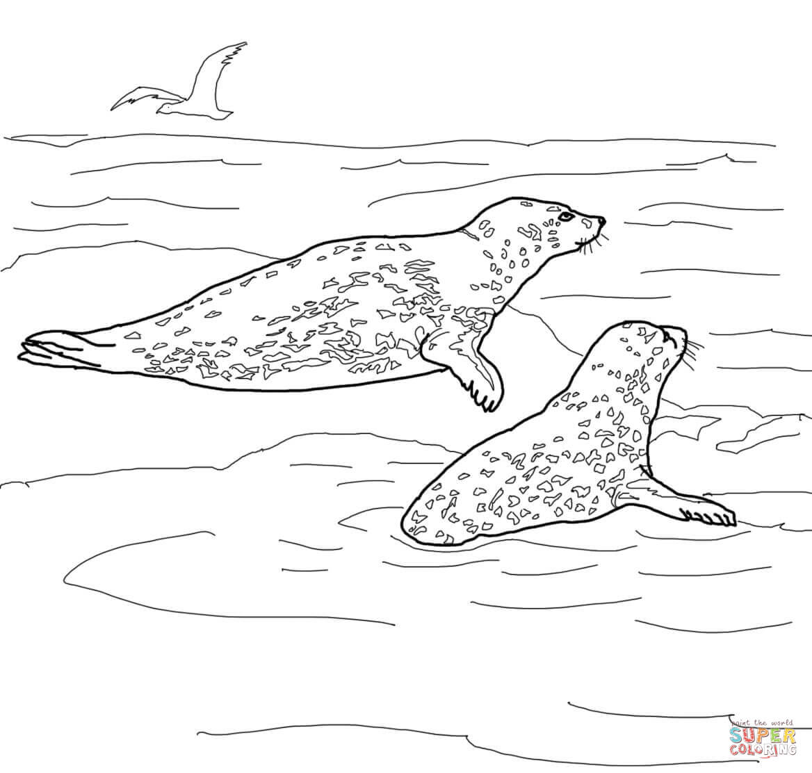 Leopard Seal coloring #16, Download drawings