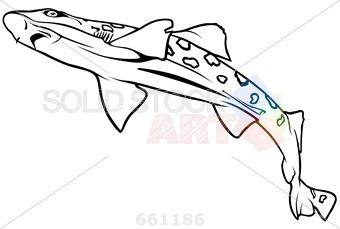 Leopard Shark coloring #14, Download drawings