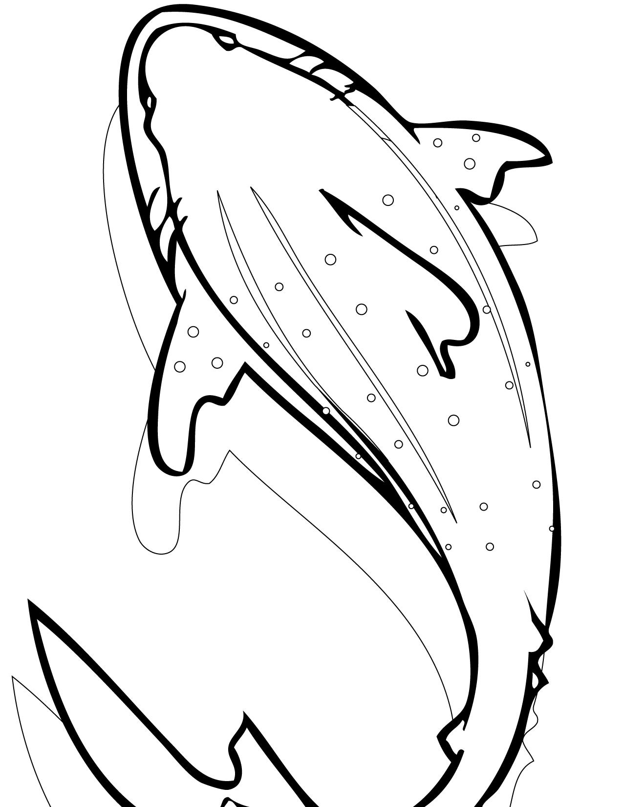 Leopard Shark coloring #1, Download drawings
