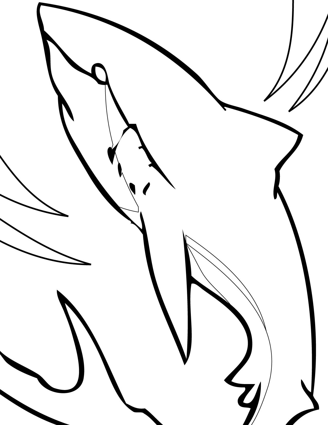 Leopard Shark coloring #12, Download drawings