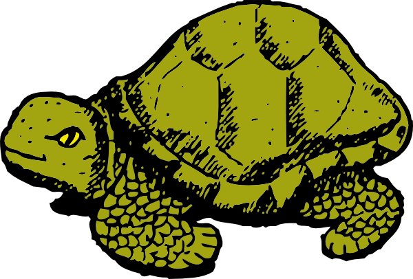 Leopard Tortoise clipart #3, Download drawings