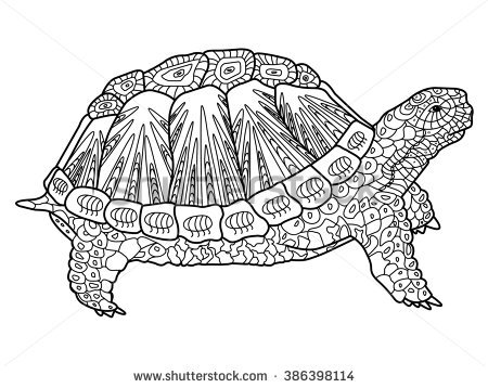 Leopard Tortoise coloring #15, Download drawings