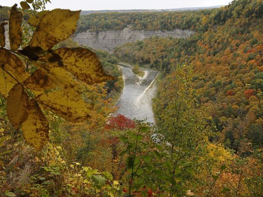 Letchworth State Park coloring #9, Download drawings