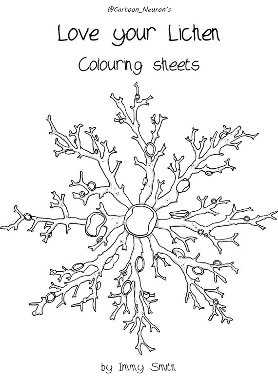 Lichens coloring #16, Download drawings