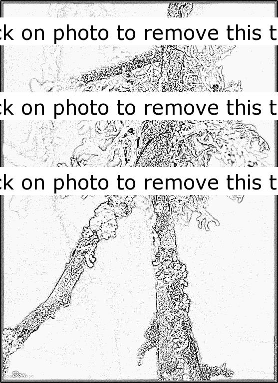 Lichens coloring #5, Download drawings