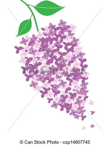 Lilac clipart #10, Download drawings