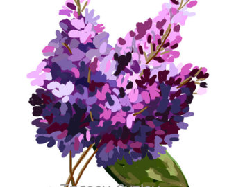 Lilac clipart #16, Download drawings