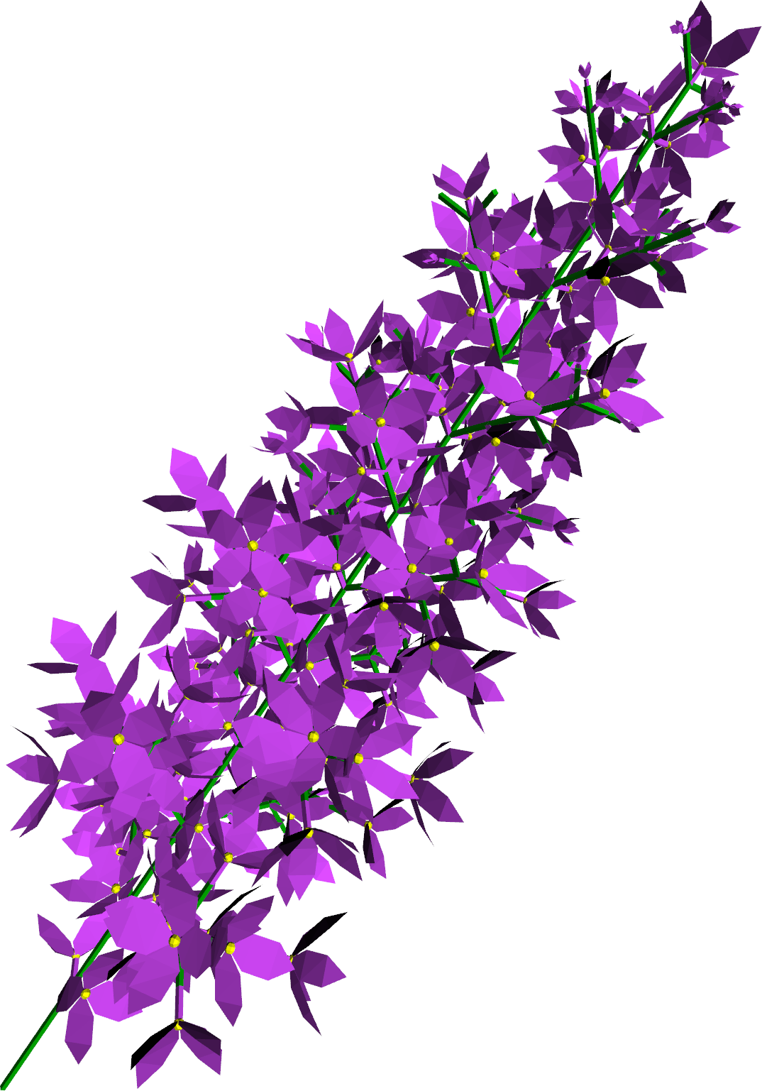Lilac svg #12, Download drawings