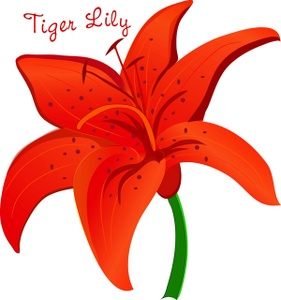 Lily clipart #9, Download drawings