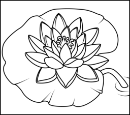 Water Lily coloring #19, Download drawings