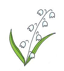 Lily Of The Valley clipart #12, Download drawings