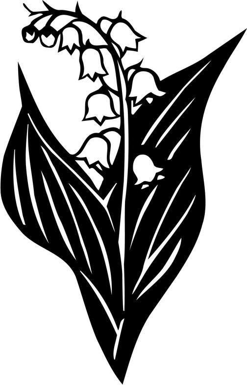 Lily Of The Valley clipart #4, Download drawings