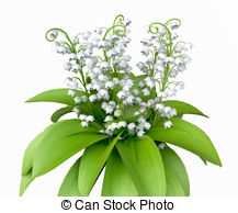 Lily Of The Valley clipart #19, Download drawings