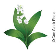 Lily Of The Valley clipart #20, Download drawings