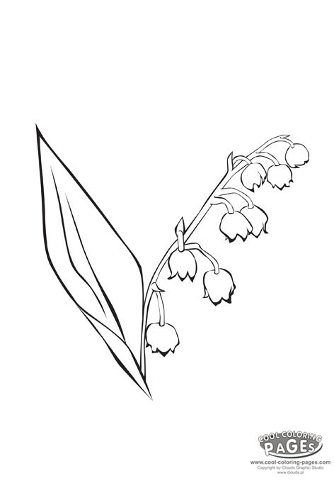 Lily Of The Valley coloring #1, Download drawings