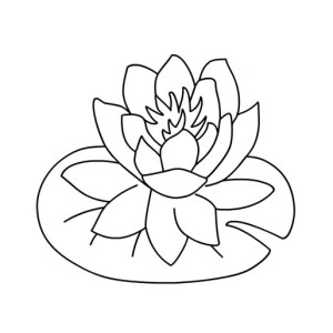 Water Lily coloring #17, Download drawings