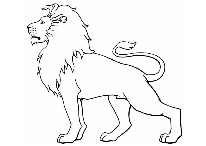 Lion coloring #6, Download drawings