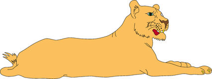 Lioness clipart #18, Download drawings